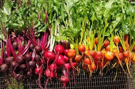 RED rainbow contributor is this health blaster vegetable the BEET